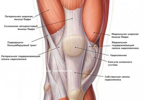 Тендинит коленного сустава: симптомы и лечение