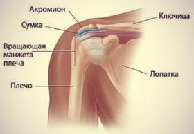 Тендинит плечевого сустава что это такое постоянное выполнение этих упражнений сделает мышцы суставы и кости эластичными
