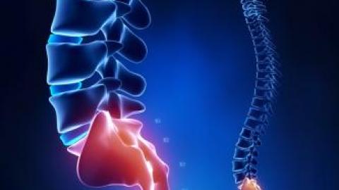 болит тазобедренный сустав причины и лечение народными средствами